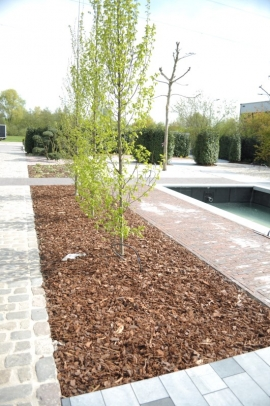 Why lay down tree bark in your garden?